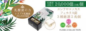 item-1-1250x450
